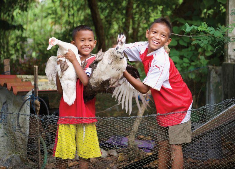 Flock of Birds - Holt International Gifts of Hope