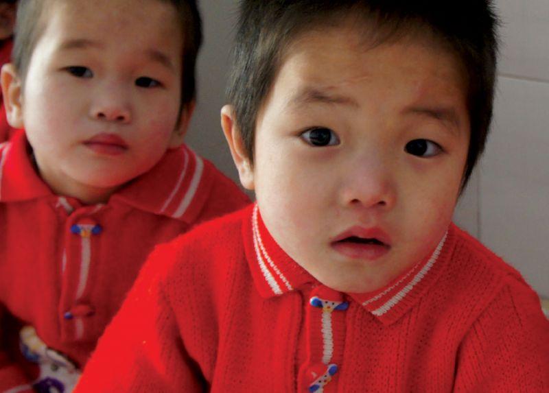 Feed Orphans in North Korea