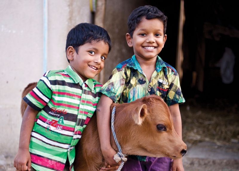 Give a Cow - Holt International Gifts of Hope