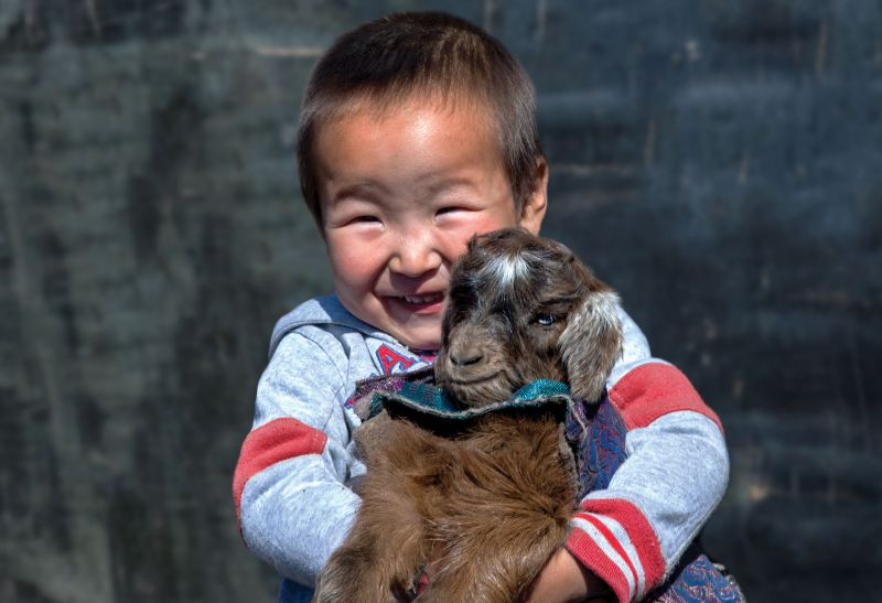Give a goat - Holt International Gifts of Hope